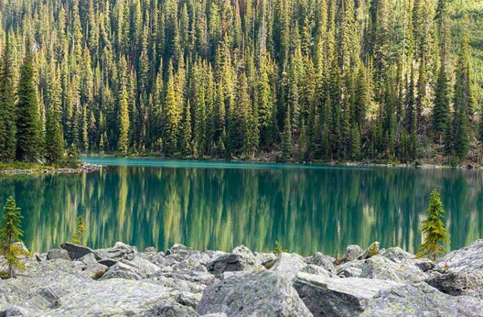 Lake o hara Multi day Hikes in Canadian Rockies